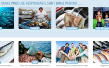 FISH FORWARD // un proiect WWF